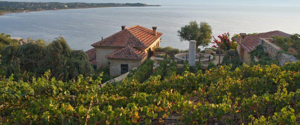 Haus_Weingärten